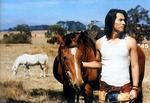 馬と旭.JPG